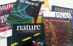 Ránking Scimago: la UNSAM, segunda universidad del país en producción científica