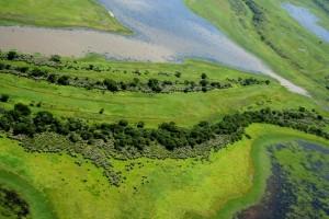 10 Delta del Parana - bosques en espiras de meandro y banados en bajos entre espiras small