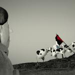 Ciclo de Cine Palestino de Buenos Aires