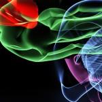 """Charla CAU """"Cognición y movimiento"""""""