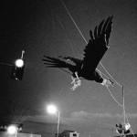 """Coloquio internacional de fotografía """"Imágenes, fronteras e identidades"""""""