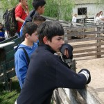 La Escuela Secundaria Técnica visitó un centro educativo agrotécnico