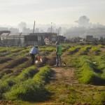 Conversatorio sobre el modelo de cárceles uruguayo en el CUSAM
