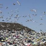 La basura como combustible
