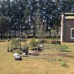 Campus Miguelete: comenzó la segunda etapa de parquización