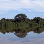 Defensa de tesis de Maestría en Gestión Ambiental
