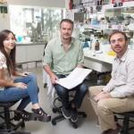 Investigadores del IIB-INTECH desarrollan kits para la detección de alérgenos y zika