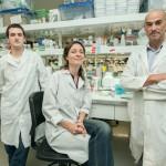 Importante avance científico de la UNSAM y el CONICET en biología celular
