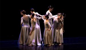 danzaimagen