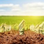 Tristan Auvray y Joel Rabinovich darán un seminario sobre financiarización de la economía