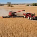 Jorge Mangonnet disertará sobre el voto económico y el agro en la Argentina