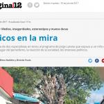 Brenda Focás escribió una columna de opinión para <i>Página/12</i>