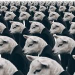 """Econofísica: Diálogo abierto sobre el """"efecto manada"""" y la concentración de la riqueza"""