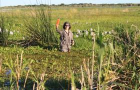 Patricia Kandus en trabajo de campo