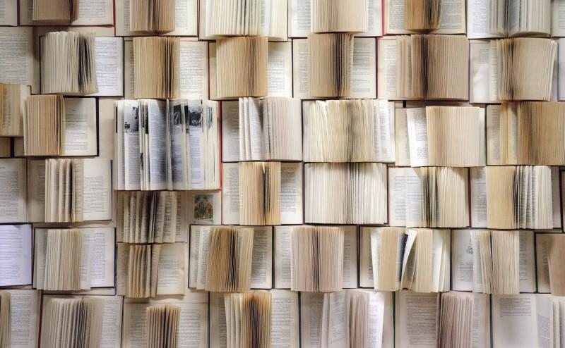 book-wall-1151405_1920