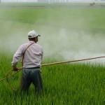 Curso de posgrado: Impacto Ambiental de Plaguicidas