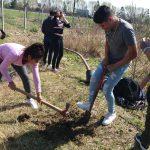 Jornada de plantación en la Escuela: Cultivando un futuro mejor