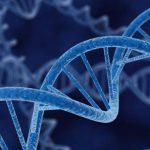 Todo lo que querías saber sobre edición génica y no te animabas a preguntar