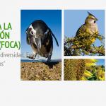 10.ª Edición del Fondo para la Conservación Ambiental