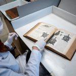 La UNSAM trabaja en la histórica biblioteca del Ecoparque de Buenos Aires