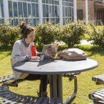 Nueva oferta de cursos virtuales de posgrado del IDAES