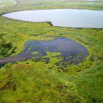 Corredor Azul: Un proyecto nacional para conservar los humedales Paraguay-Paraná