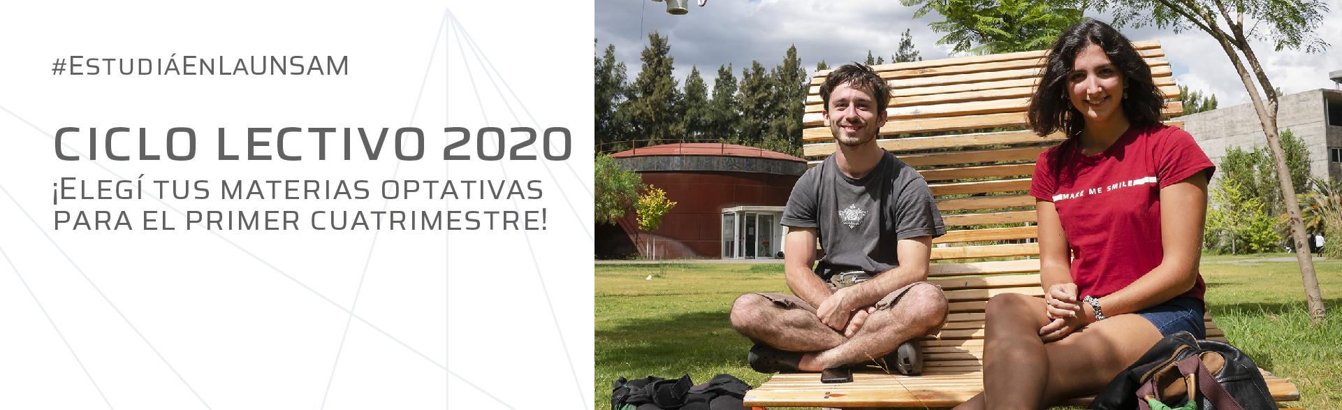 Materias optativas 2020