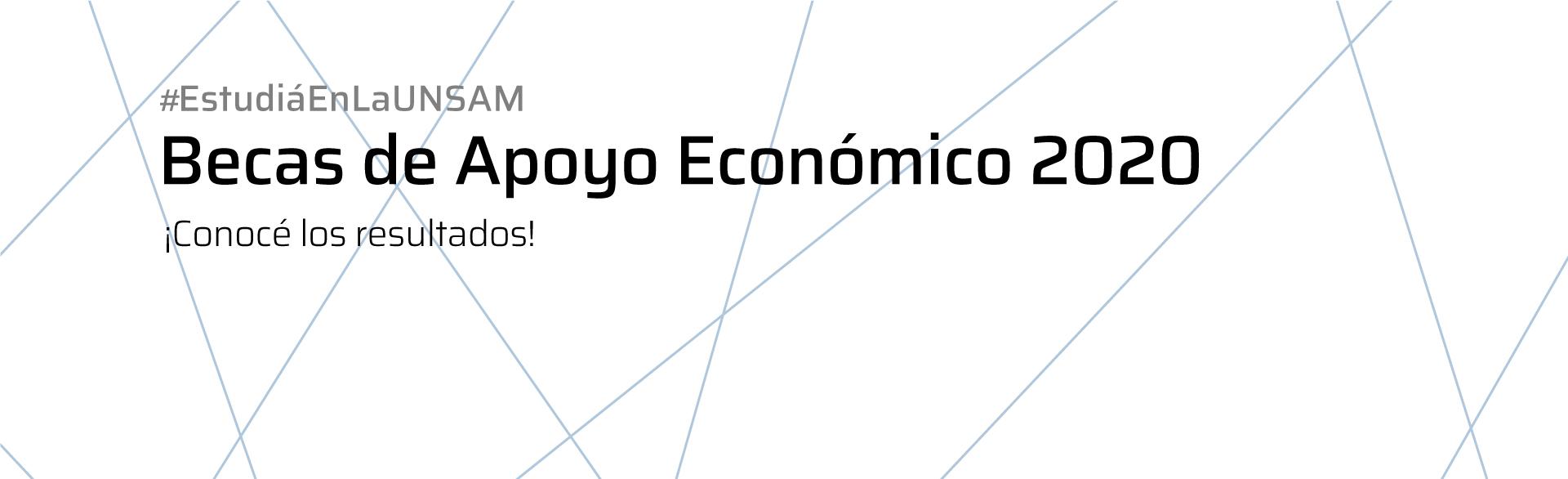 Becas de Apoyo Económico 2020
