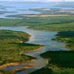 Investigadorxs de la UNSAM elaboraron un documento sobre la ley de humedales