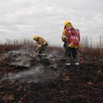 """Incendios en el Bajo Paraná: """"No pensamos el Delta como un santuario de la naturaleza, sino con la gente adentro"""""""