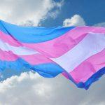 Día Internacional de Acción por la Despatologización Trans: existencias disidentes en la universidad y en la producción de conocimiento científico