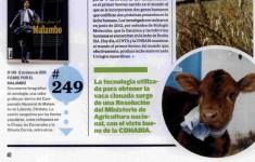 La vaca Rosita