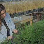 Inscribite en la Ingeniería en Agrobiotecnología de la UNSAM