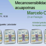 Seminario de Ingeniería Biomédica a cargo de Marcelo Ozu