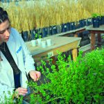 Ingeniería en Agrobiotecnología: Inscripción 2020