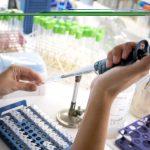 UNSAM y ANLIS Malbrán trabajarán con los genomas de Coronavirus para acelerar el desarrollo de un test masivo