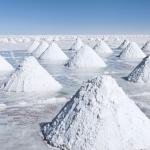 """Webinar """"Escenarios y perspectivas sobre el litio en Argentina"""""""