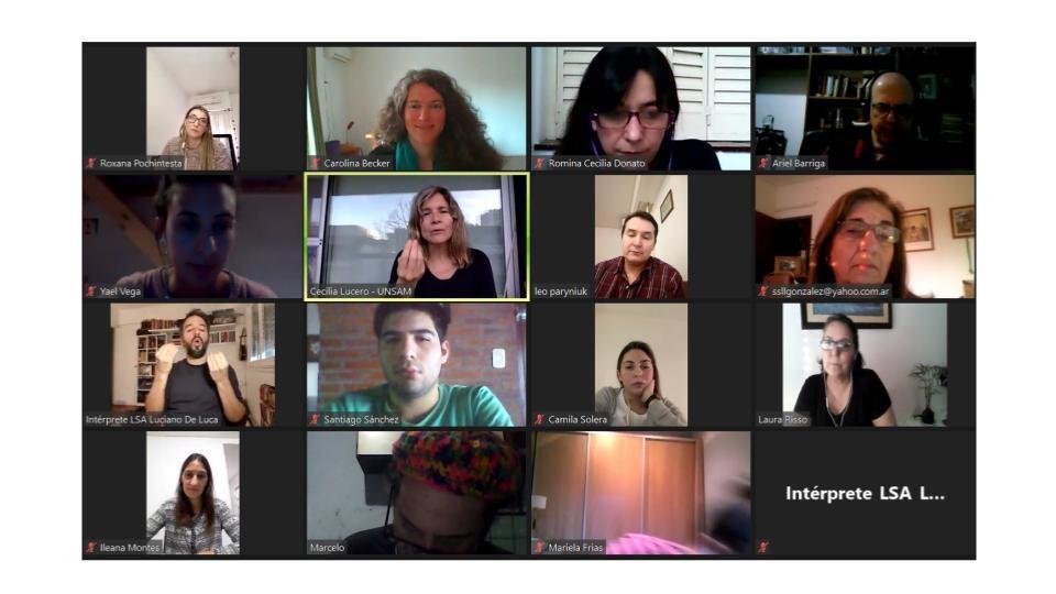 Captura de pantalla de la reunión virtual de la Comisión