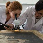 Licenciatura en Conservación y Restauración del Patrimonio Cultural: inscripción 2020