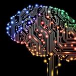 """Ciclo de Conferencias: """"Lenguaje y cerebro. ¿Qué nos enseñan las alteraciones sobre la organización del sistema lingüístico?""""."""