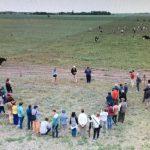 """Webinar """"Transiciones hacia un modelo agropecuario alternativo"""""""