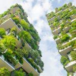 Un programa que capacita en el diseño de políticas públicas orientadas al desarrollo urbano sustentable
